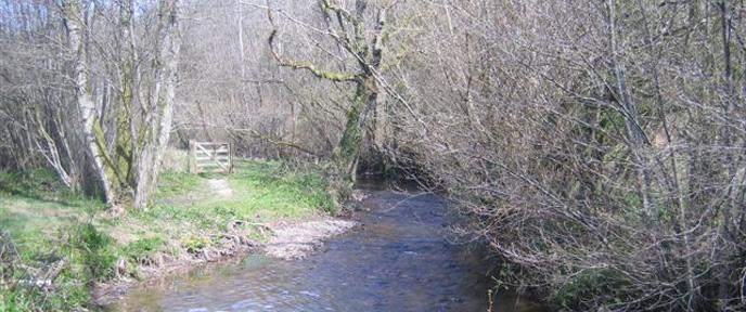 waterrow-4-688