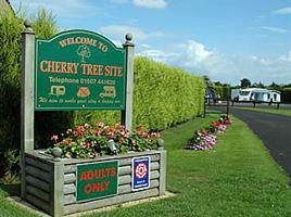 cherry-thumb