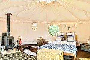 Glamping yurt at Back of Beyond Touring Park