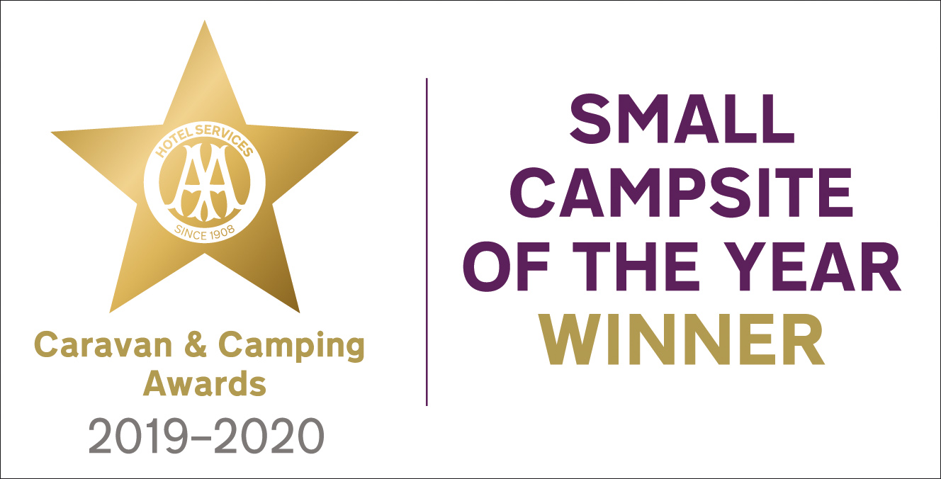 AA Small Campsite of the Year Winner 19 20