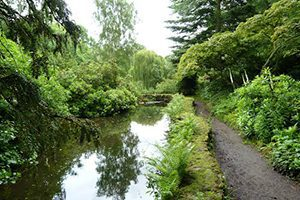 Brookside-Normanby-hall-walk-2