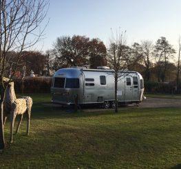 Lamb Cottage Caravan Park | Tranquil Parks