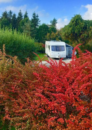 Longnor Wood Holiday Park | Tranquil Parks