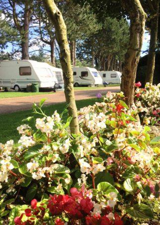 Overbrook Caravan Park | Tranquil Parks