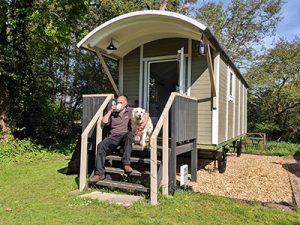 Back of Beyond dog friendly shepherd hut