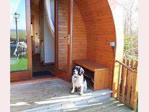 Eye Kettleby Lakes luxury dog friendly pod
