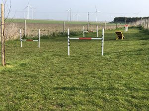 Fields End Water dog agility course