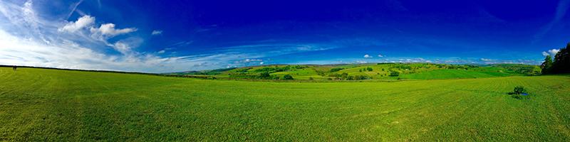 Dog walk at Longnor Wood panoramic view