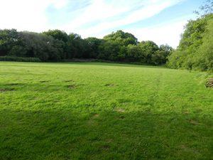 Woodland Springs dog exercise area