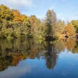 Autumn-winter opening 2021